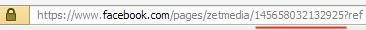 Fanpage-URL vor Beantragung eines eindeutigen Namens
